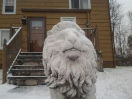 snow lion by GUDRUN355