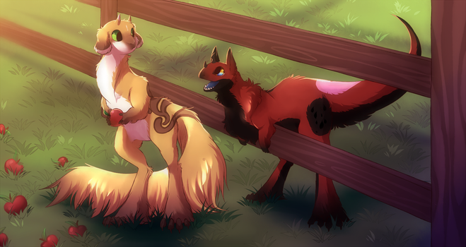 Why are you on the other side of the fence by Unikeko