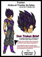 Fusion - Son Trokus Brief by VMJML1er