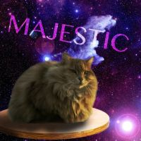 Majestic Space Table Cat (AKA Why Did I Make This) by Ozai-Fanatic