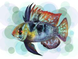 My first Photoshop Painting - Ram Cichlid by ASD92
