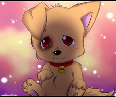 Puppy by Klaudy-na