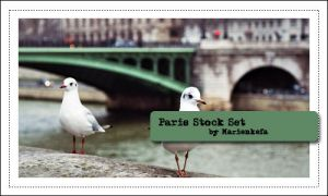 Paris and environment stocks by Marienkefa