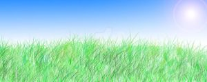 Meadow Background by leafyloo