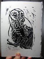 Christmas Card 2012: Barn Owl Linocut by JillianLambertArt