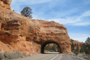 Desert - Zion Tunnel by elodie50a