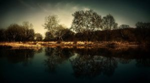 waterandtrees by uzengia