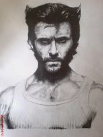 Hugh jackman as Wolverine by benmboard
