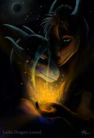 Where the heart is by Lailie-Dragon-Lovard