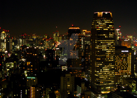 Night View From Tokyo Tower 2 by theblindalley