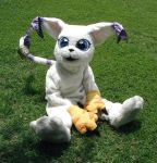 Gatomon Costume - old 2000 by jacemoore