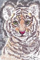 Stripes and lines of the Tiger cub by hidden-by-art
