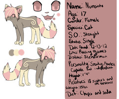:P.C.: Numsiete Reference Sheet by ghost--scarves