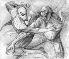Amazing Spider-Man vs The Lizard by b2rianLS