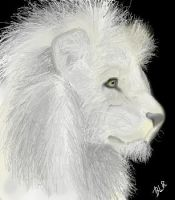 White Lion by pandabarrie