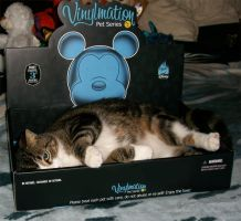 The -NEW- Vinylmation by Drache-Lehre