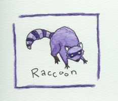 Raccoon by kairanie
