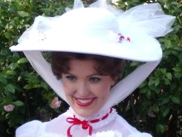 Practically Perfect by LostWendy