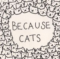 Because Cats Thats Why by EstelleApples153