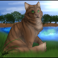 Crookedstar of RiverClan by xxMoonwish