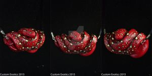 Red Green Tree Python Neonate Pendant by CustomExotics