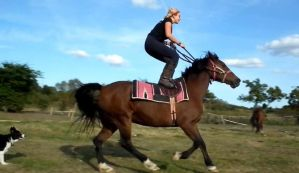 Standing On A Horse's Back Cantering by StarCrossedPsycho