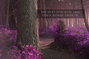 The forest Whispers Purple Stock by TEMPERATE-SAGE