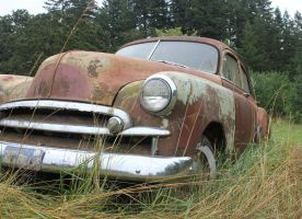 GM car in field by finhead4ever