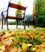 Bench II by TriciaAdder