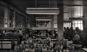 At work - 132 by SUDOR
