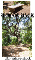 Woods Pack by dlc-nature-stock