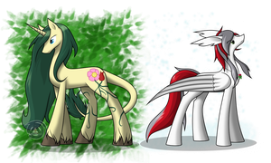 Spring and Winter by ErinKarsath