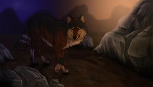 Narvem-Naturama commission by Dalkur