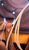 Saddle Closeup by SaraRC