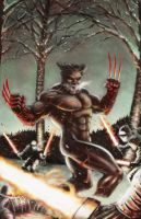 Wolverine - Hot Steel showdown by JMan-3H