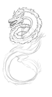 Chinese Lung Dragon WIP by CrazyLittleOwl