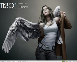 Linux Mint MATE Desktop by ninuun23