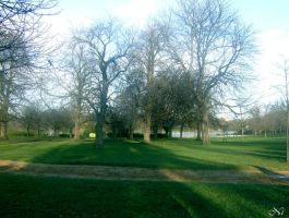 Hyde Park by MetalNi