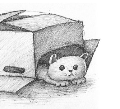 Cat in a Box by Stuifie