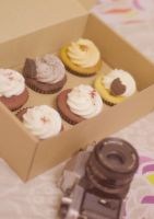 cupcakes by puddingpolaroid