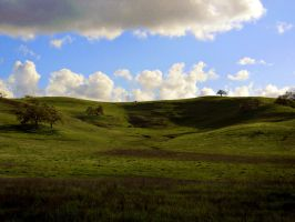 Rolling Hills by veronicagibson