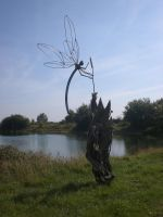 Dragonfly on driftwood by theforgery