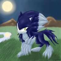 Sonic the Werehog by GirGrunny