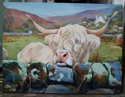 Highland Cow by jpeckarts
