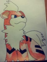Growlithe Drawing by Krayzieee