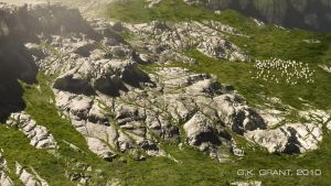 Rocky Pastures by phaceless2