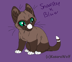 Snowstep and Blues kit by TwilightLuv10