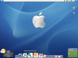 Mac OS X 10.4 Tiger on Win XP by twinware