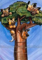 Wild Dog Tree by sobeyondthis