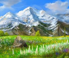 Alaska mountain meadow attempt by andrekosslick